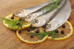 盐味的西鲱用在切板的柠檬 免版税库存图片