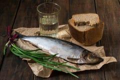 盐味的鲱鱼、伏特加酒、葱和黑面包 库存照片