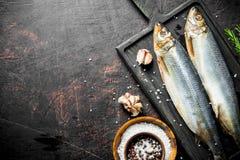 盐味的鲱鱼用拨蒜和香料在碗 库存图片
