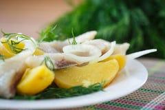 盐味的鲱鱼用煮的土豆 免版税库存照片
