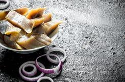 盐味的鲱鱼被切的内圆角与洋葱圈的 库存照片
