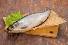 盐味的鲱鱼鱼 免版税库存照片