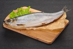 盐味的鲱鱼鱼 图库摄影