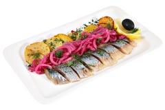 盐味的鲱鱼,切用油煎的土豆和被腌制的葱, i 免版税库存图片