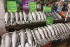 盐味的Terubok鱼卖主 库存图片