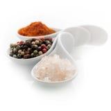 盐和胡椒 免版税库存图片