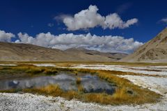 盐山湖:在白色盐果皮和绿色植被中的大海,在高小山附近,蓝色夏天天空,北印度 库存图片
