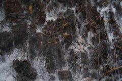 盐平原抽象特写镜头在Kissama,本戈省震动纹理 图库摄影