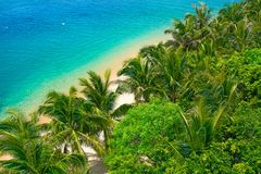 盐水湖的美丽的景色有白色沙子和棕榈树的,绿松石海 顶视图 库存照片
