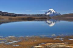 盐水湖Chungara 图库摄影