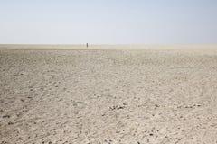 盐沙漠在纳米比亚 库存照片