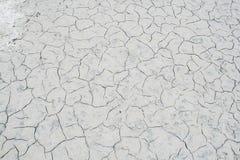 盐沙漠纹理 库存照片