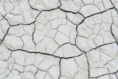 盐沙漠纹理 免版税库存图片