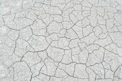 盐沙漠纹理 免版税库存照片