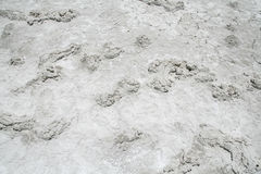 盐沙漠纹理 库存图片