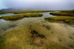 盐沼狂放的大西洋方式爱尔兰 库存图片