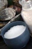 盐洗刷海运 免版税库存照片