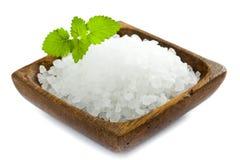 盐海运 免版税图库摄影