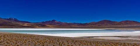 盐湖全景在阿塔卡马高原/智利 库存图片