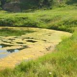 盐湖在锡比乌盐矿镇,在锡比乌Hermanstadt附近 图库摄影