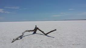 盐湖犹他 库存图片