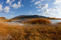 盐湖的海岸 库存照片