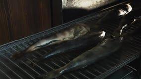 盐溶在吸烟房或烟烤箱安置的鱼说谎在格栅的或花格抽烟的 股票录像