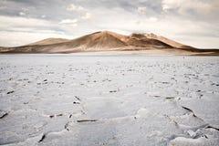 盐溶在盐水湖和盐湖Tuyajto岸的外壳  库存照片