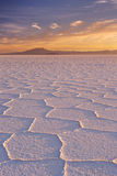 盐溶平的撒拉族de Uyuni在玻利维亚在日出 库存图片