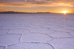 盐溶平的撒拉族de Uyuni在玻利维亚在日出 图库摄影