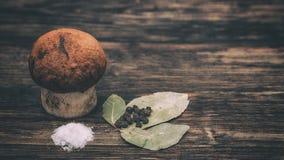 盐溶的蘑菇 免版税库存照片