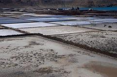 salinas de Janubio,兰萨罗特岛 免版税图库摄影