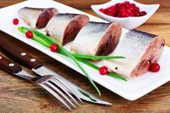 盐用卤汁泡的鲭鱼用蔓越桔和香料 图库摄影