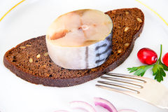 盐用卤汁泡的鲭鱼用蔓越桔和 库存照片