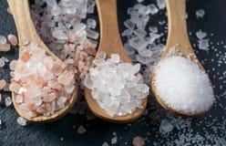 盐的不同的类型 在三把木匙子的顶视图 免版税库存图片