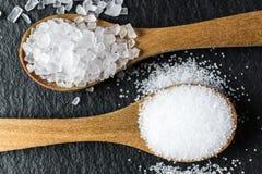 盐的不同的类型 在两把木匙子的顶视图 图库摄影