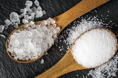 盐的不同的类型 在两把木匙子的顶视图 免版税图库摄影