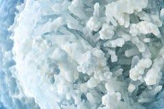 盐的晶族宏观射击  盐水晶的晶族  矿物结构  库存图片