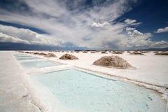 盐的阿根廷 库存照片