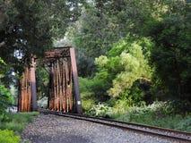 盐矿在FingerLakes的火车桥梁 免版税图库摄影