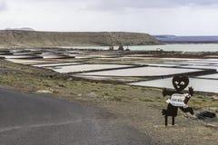 盐精炼厂 免版税库存照片