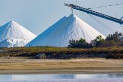 盐运作,有白色堆的工厂设备Camagrue sa海 免版税图库摄影