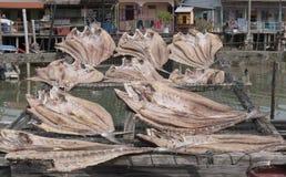 盐鱼在一个晴天 免版税图库摄影