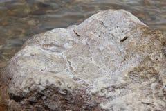 盐,死海,约旦 免版税库存照片