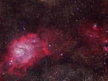 盐水湖星云 库存照片