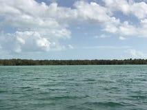 盐水湖的边界 库存图片
