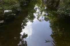 盐水湖 库存图片
