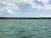 盐水湖II的边界 免版税库存图片