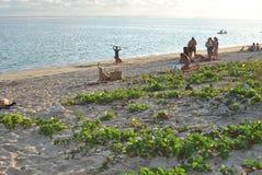 盐les Bains,海滩雷乌尼翁冰岛 图库摄影
