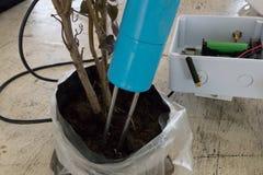 监测的湿气传感器在土壤 聪明的农业techno 免版税库存照片